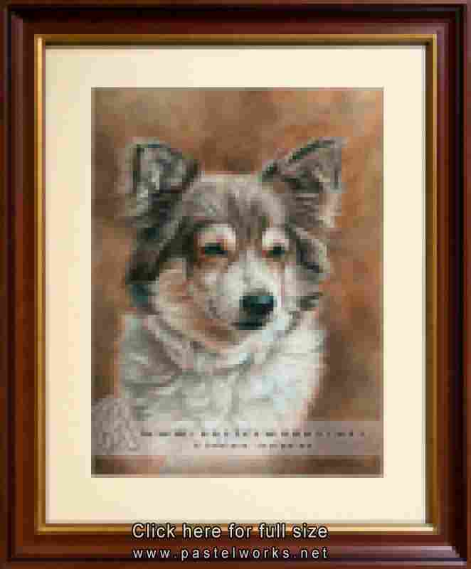 dog portrait pastel framed
