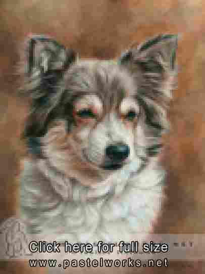 dog portrait pastel