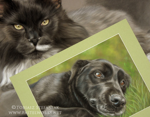 comparison_black-labrador-retriever-pastel-drawing_by_tobiasz-stefaniak_www-pastelworks-net