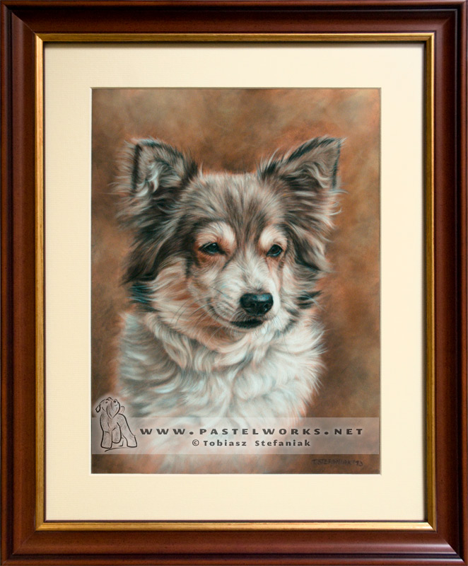 dog-portrait-pastel-framed