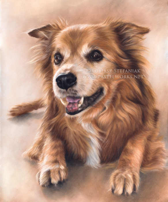 pastel painting of an old dog