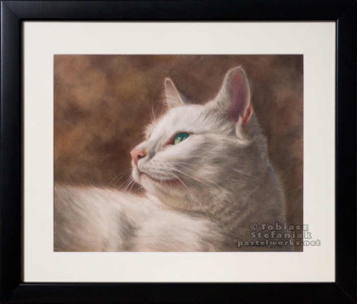 white-cat-framed