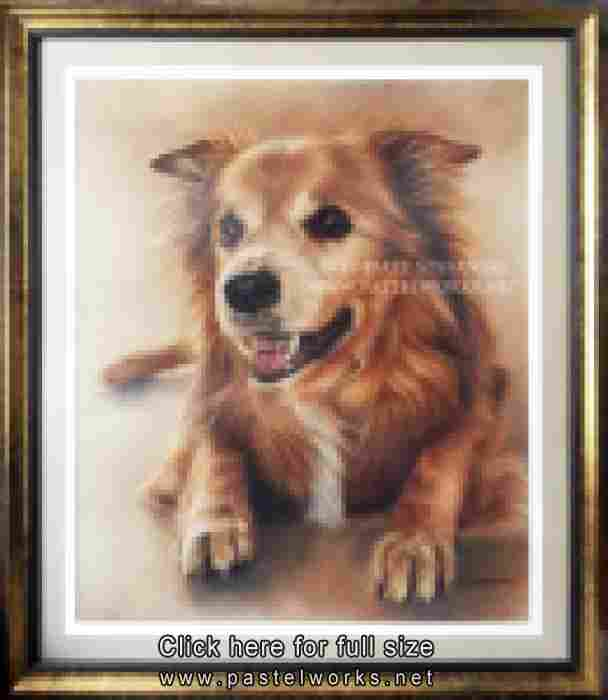 senior dog pastel drawing portrait framed and matted tobiasz stefaniak www pastelworks net