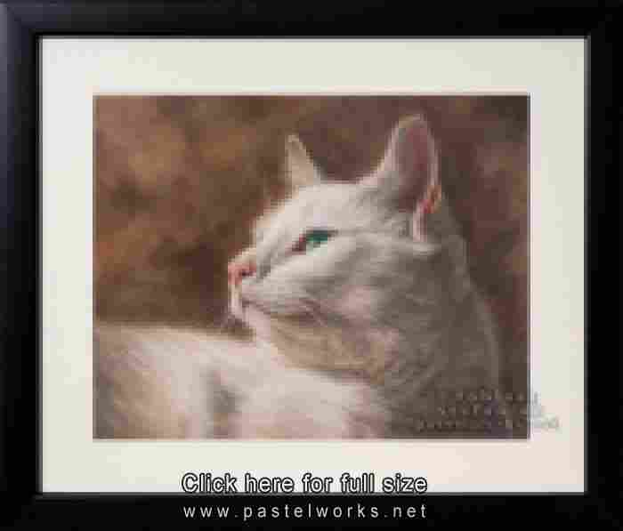 white cat framed